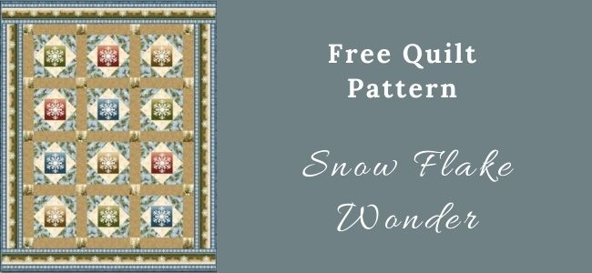 I love Quilting Forever Snow Flake Wonder quilt