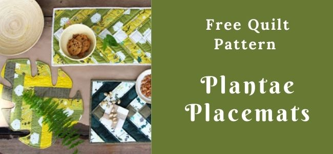 I love Quilting Forever_Plantae Placemats quilt