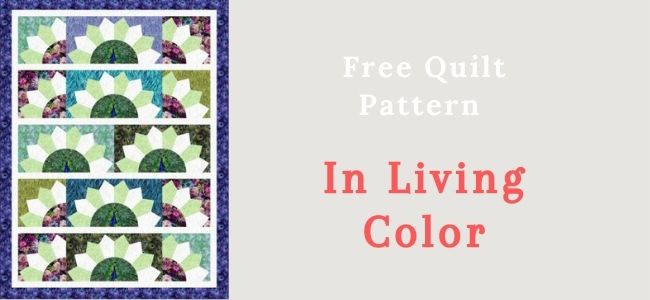 In Living Color Quilting