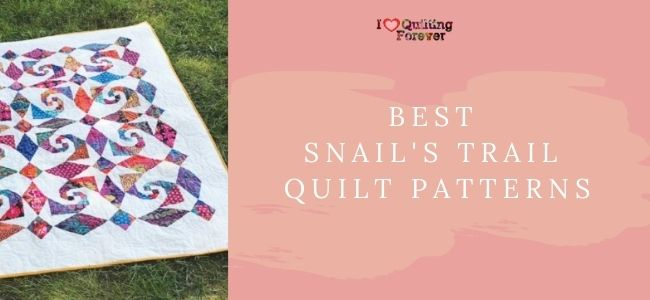 I love Quilting Forever_Best Snail's Trail Quilt