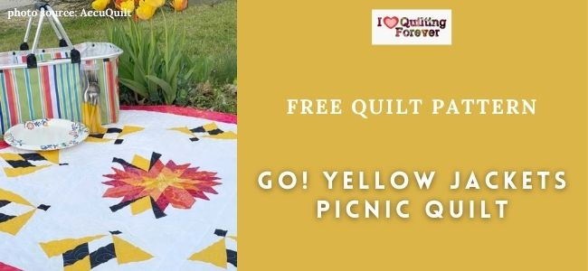 AccuQuilt GO! Yellow Jackets Picnic Quilt Featured Cover- ILQF