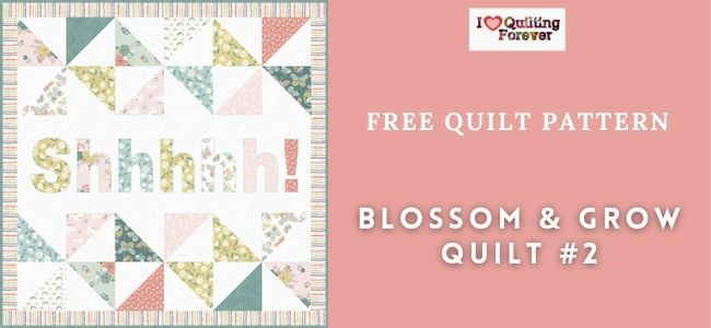 Blossom & Grow Quilt #2 Featured Cover - ILQF