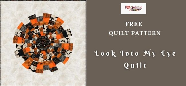 Look Into My Eye Quilt featured cover - ILQF
